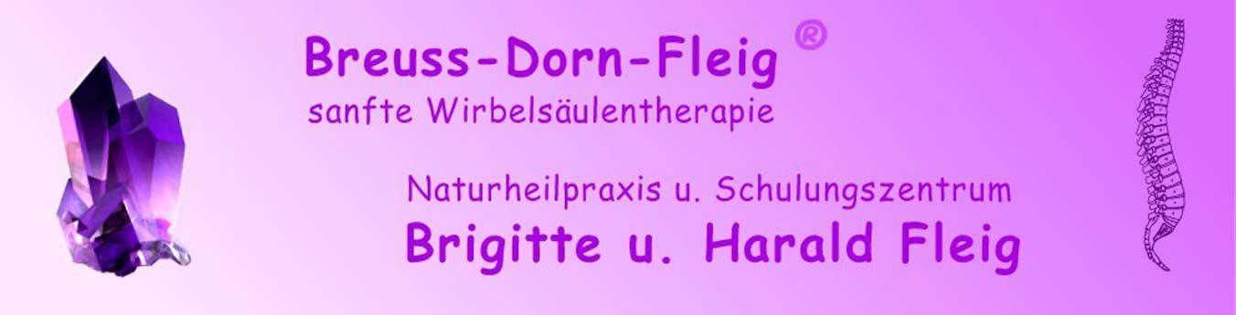 Naturheilpraxis Brigitte und Harald Fleig